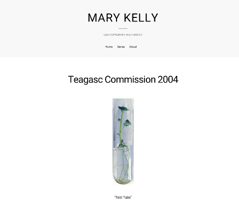Mary Kelly: Screenshot of an exhibition page