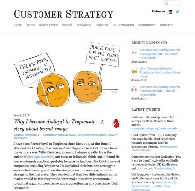 Customer Strategy – blog page